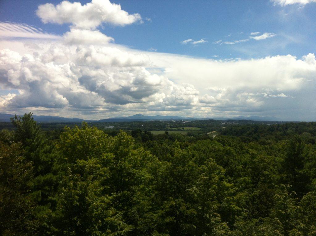 Vermont, lush af. Photo by Tyler Machado.