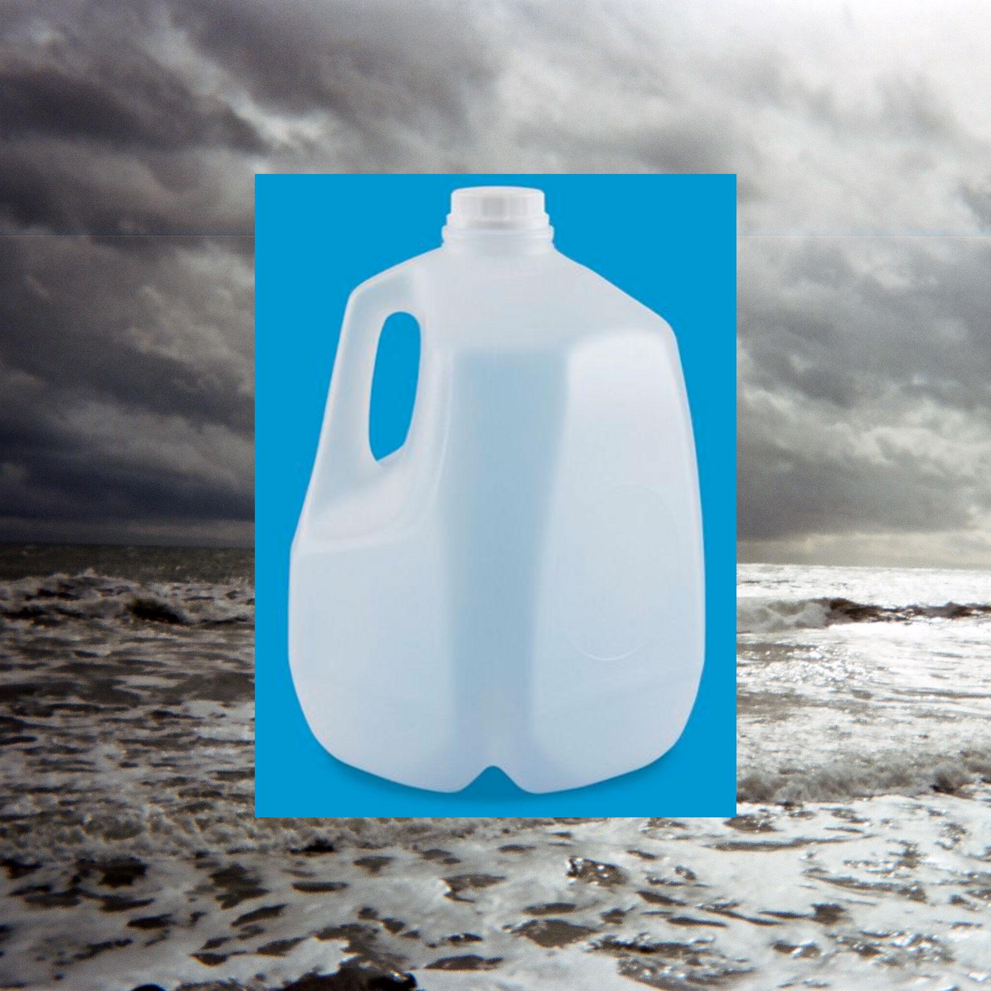 TRASH IS TRAGIC: The WTF World of Bioplastics | BOSTON HASSLE