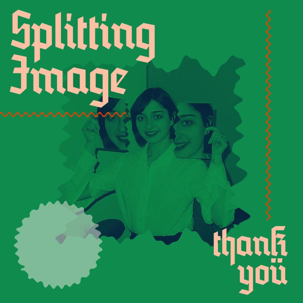 splitting image – thank you