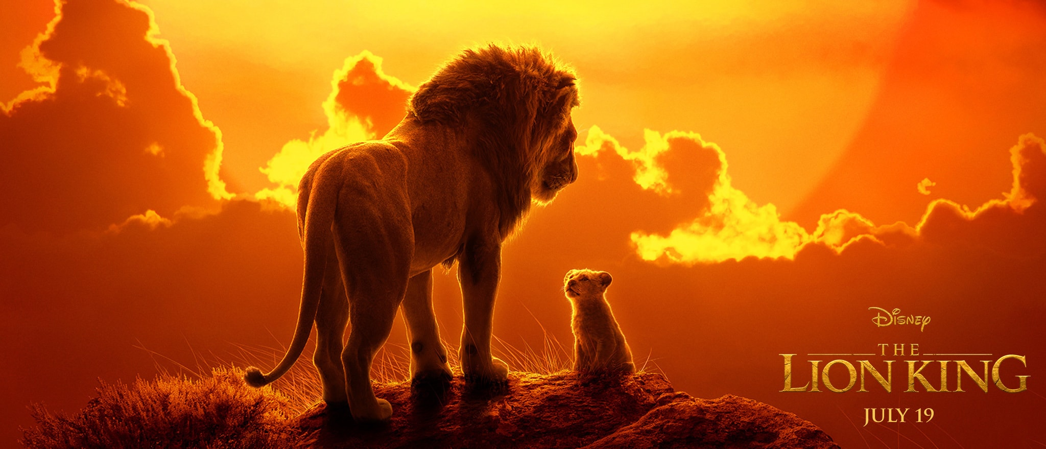 Review The Lion King 2019 Dir Jon Favreau Boston Hassle