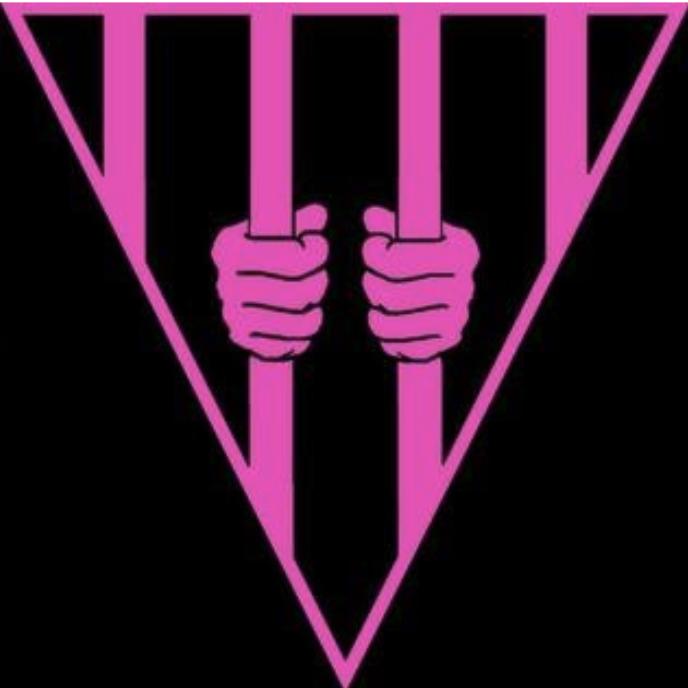Dismantling a Black & White Narrative: LGBTQ+ Activists ...