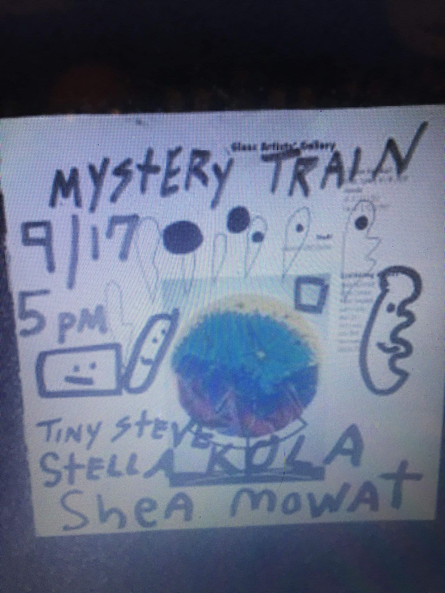 Crude and silly drawings of shapes with faces in sharpie next to the band information listed in the event